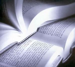 Concurso Cultural Leitura Abre Portas