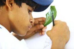 Juventude e Cidadania Ativa em Jaboatão dos Guararapes – PE