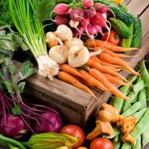 Práticas orgânicas podem dobrar agricultura em dez anos