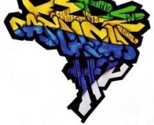 Por que construir uma organização nacional de Casas da Cultura Hip Hop?