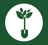 Aplicativo gratuito ensina a fazer e cultivar hortas em casa