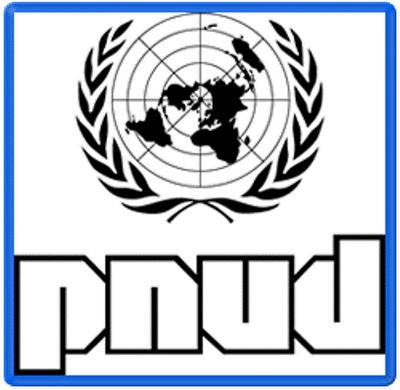 Lançamento de pesquisa PNUD