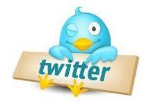 67% dos jovens brasileiros não usam Twitter, diz pesquisa