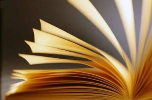 Fundação de Cultura apóia literatura de Mato Grosso do Sul