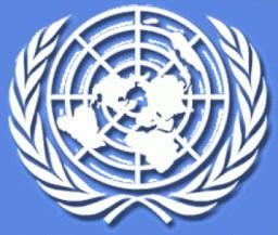 ONU procura jovens profissionais